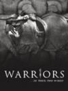The Book:  Warriors...In Their Own Words